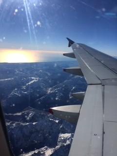NZ view